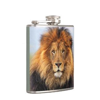 Cantil Leão africano 1