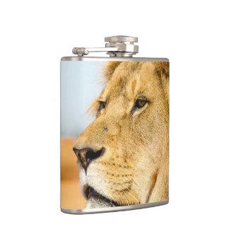 Cantil Leão grande que olha longe