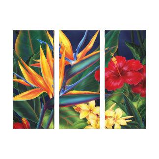Canvas 3-Panel havaianas do paraíso tropical Impressão De Canvas Esticada