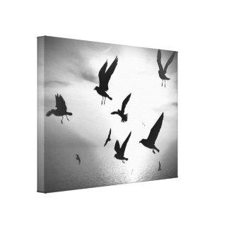Canvas brancas pretas das folhas dos pássaros do