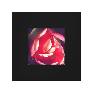 Canvas cor-de-rosa da flor
