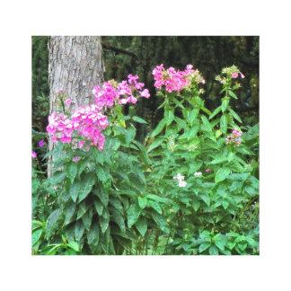 Canvas cor-de-rosa das flores e da árvore