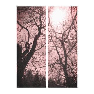 Canvas cor-de-rosa pretas & brancas do sol