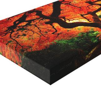Canvas da árvore alaranjada