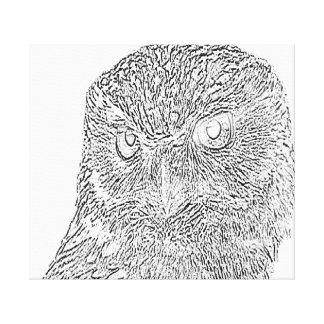 Canvas da coruja
