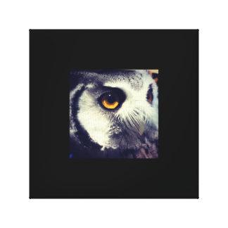 Canvas da foto da coruja