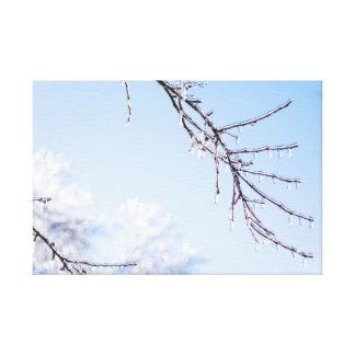 Canvas de derretimento do gelo do inverno
