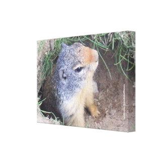 Canvas de Groundhog Impressão De Canvas Esticada