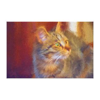 Canvas do gato impressão de canvas envolvida