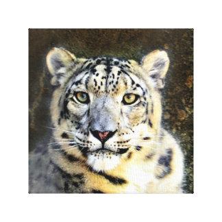 Canvas do leopardo de neve