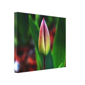Canvas do orgulho do primavera impressão em tela