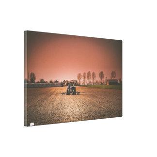 Canvas do solteiro da paisagem do campo
