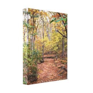 Canvas douradas do córrego do outono impressão em tela