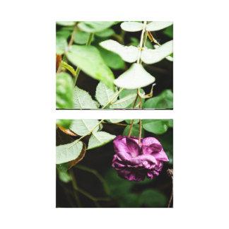Canvas empilhadas da flor dobro roxo