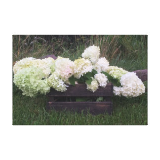 canvas florais brancas