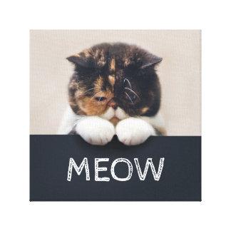 Canvas macias exóticas do monograma do gato