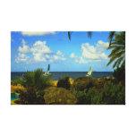 Canvas superiores do Palm Beach tropical (brilho)