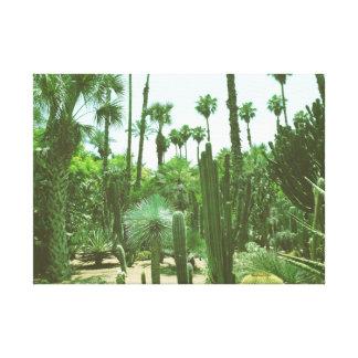 Canvas tropicais dos jardins dos cactos