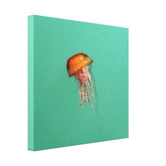 Canvas vermelhas da arte da foto das medusa