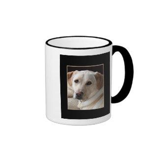 Cão amarelo de labrador retriever na caneca cerâmi