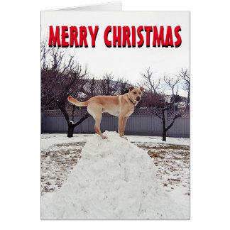 Cão bonito no cartão de Natal da neve