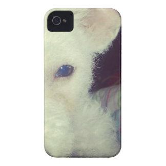 Cão branco bonito capas para iPhone 4 Case-Mate