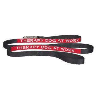 Cão da terapia no trabalho (trela) coleira para cão