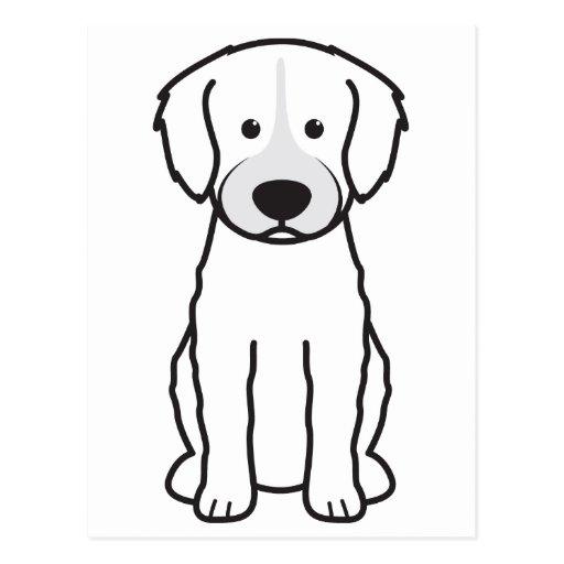 Cão de água espanhol cartão postal
