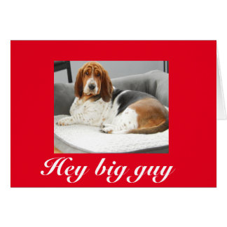 Cão de Basset no cartão engraçado do dia dos