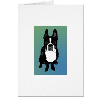 Cão de Boston Terrier cercado no cartão da cor