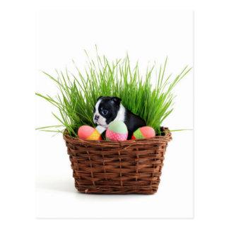 Cão de Boston Terrier da páscoa Cartão Postal