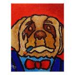 Cão de Butchie por Piliero Panfleto Coloridos