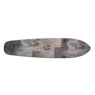 Cão de Chairi Skate