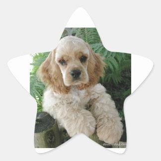 Cão de cocker spaniel do americano e a samambaia adesito estrela
