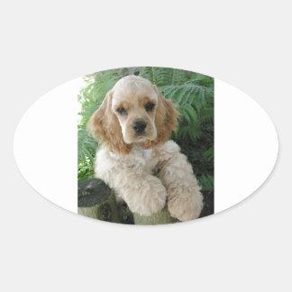 Cão de cocker spaniel do americano e a samambaia adesivo oval