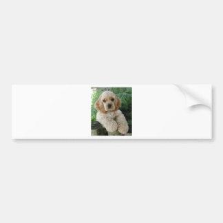 Cão de cocker spaniel do americano e a samambaia adesivo para carro