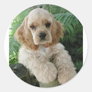 Cão de cocker spaniel do americano e a samambaia adesivo redondo