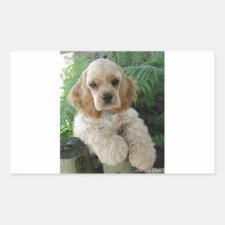 Cão de cocker spaniel do americano e a samambaia adesivo retangular