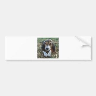 Cão de filhote de cachorro de Artésien Normand do Adesivo De Para-choque