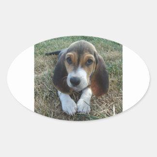 Cão de filhote de cachorro de Artésien Normand do Adesivo Oval
