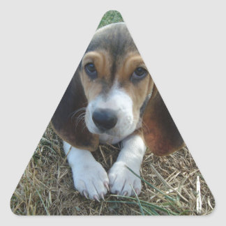 Cão de filhote de cachorro de Artésien Normand do Adesivo Triangular