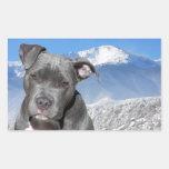 Cão de filhote de cachorro de Pitbull Terrier do Adesivos Retangular