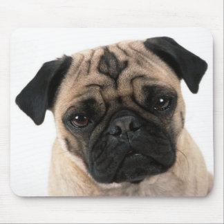 Cão de filhote de cachorro do Pug do amor com Mouse Pad