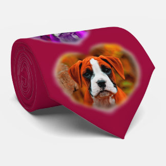 Cão de filhote de cachorro do pugilista da arte Op Gravata