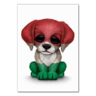 Cão de filhote de cachorro húngaro patriótico boni