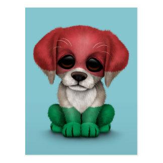 Cão de filhote de cachorro húngaro patriótico boni cartao postal