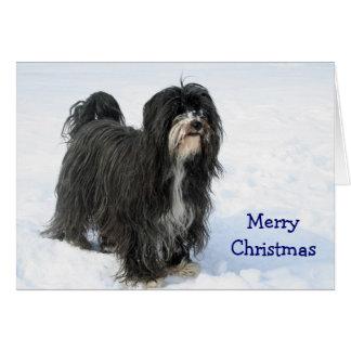 Cão de Terrier tibetano no cartão de Natal feito