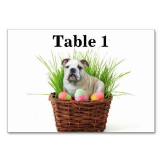 Cão do buldogue da páscoa