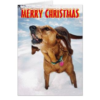Cão do descascamento no cartão de Natal da neve