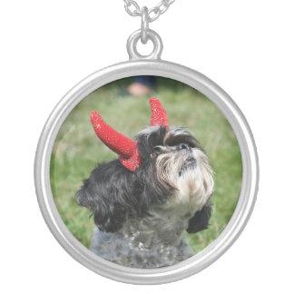 Cão do Dia das Bruxas Shih Tzu Colar Com Pendente Redondo